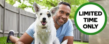 VetAssist with Woolworths Pet Insurance