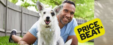 pet insurance price beat