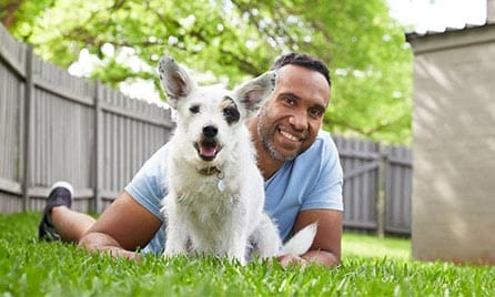 Get a Woolworths Pet Insurance quote