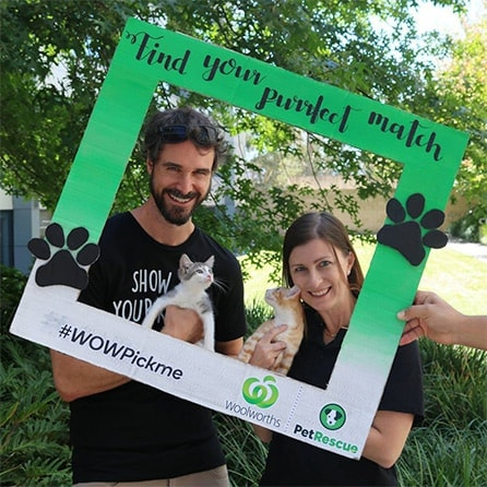 PetRescue | Woolworths Insurance